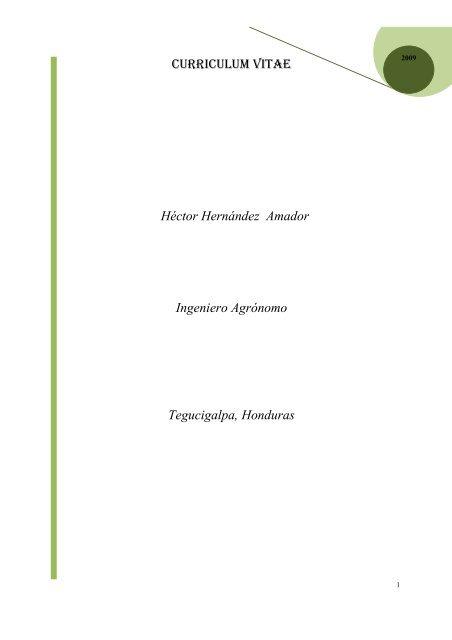 Curriculum Vitae Hector Hernandez Amador Ingeniero