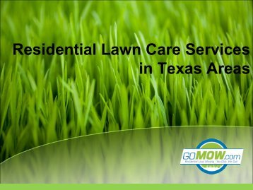 Looking for lawn mowing service near Texas?