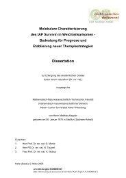Molekulare Charakterisierung des IAP Survivin in Weichteilsarkomen