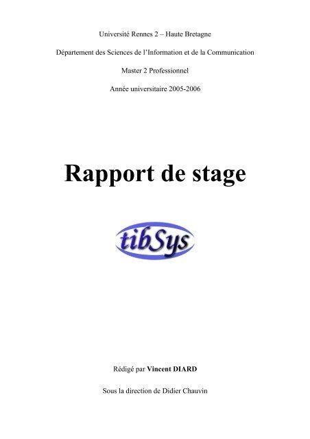 Rapport De Stage Cv Interactif De Vincent Diard