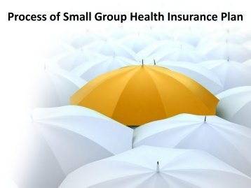 Process of Small Group Health Insurance Plan by Independent Benefit Advisors