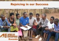 AEE Annual Report 2017