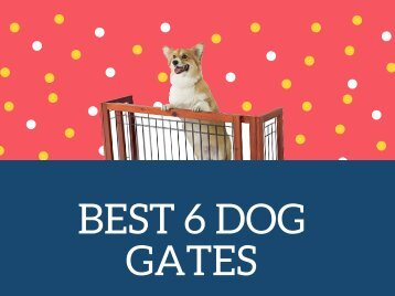 Have a Look at Best 6 Dog Gates | Pet and Baby Gates