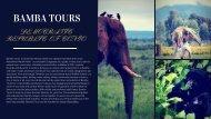Congo Gorilla Trekking Tours