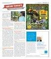 Mid Rivers Newsmagazine 8-8-18 - Page 3
