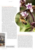 stadtMAGAZIN köln-süd | Ausgabe August-September 2018 - Page 5
