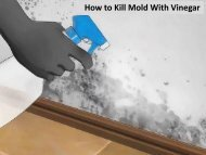 How to Kill Mold with Vinegar by Carolina Water Damage Restoration