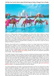 All That You Need to Know about World Famous Golden Triangle Tour of India