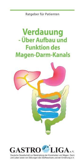 Verdauung - Über Aufbau und Funktion des Magen ... - Gastro Liga
