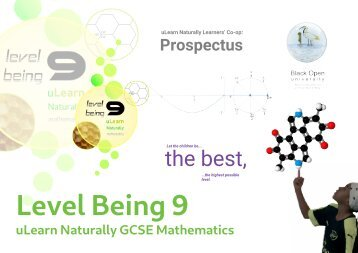 Prospectus - Level Being 9 - The Best - The highest possible level - uLearn Naturally GCSE Mathematics
