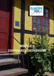 M6_Cooperare_si_networkingRO