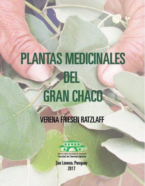 curar la próstata con hierbas y revisiones de aloe vera