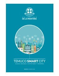 Temuco Smart City