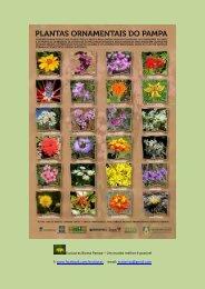 Plantas Ornamentais do Pampa