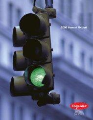 Ingenico | 2008 Annual report