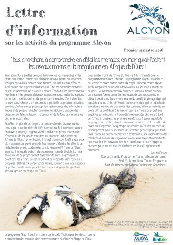 Alcyon Newsletter Juil 2018-FR