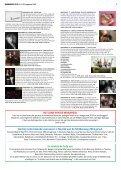 Binnendijks 2018 31-32 - Page 5