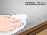 How to Remove Black Mold from Your Home or Business