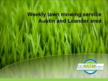 Searching for Grass Cutting service Austin, Texas?