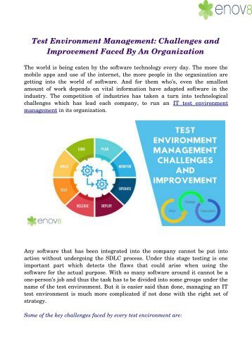 Test Environment Management: Challenges and Improvement Faced By An Organization