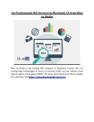 Get Professional SEO Services in Maryland, VA from Blue 16 Media