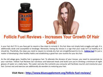 Follicle Fuel - Hair Growth Formula For Long & Strong Hairs!