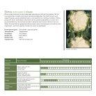 Leaflet Bloemkool Voorjaar - Page 3