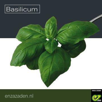 Leaflet Basilicum 2018