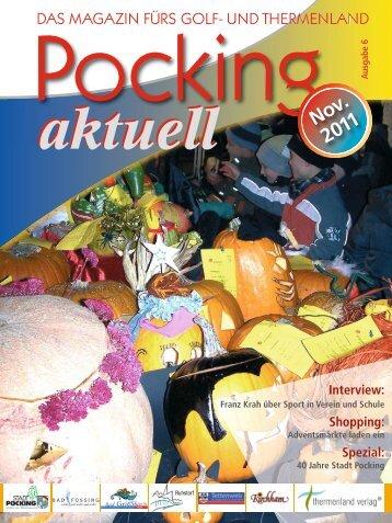 Pocking Aktuell November 2011