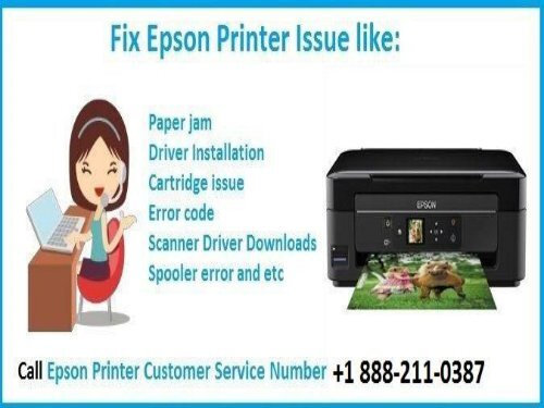 Dial 1888-211-0387 To Fix Paper Jam Error codes in epson Printer
