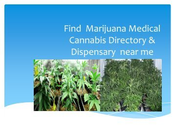 Find  marijuana medical cannabis directory