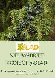 2018.08.17-PROJECT-7-BLAD-NIEUWSBRIEF-11