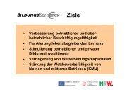 Richtlinien B-Scheck.pdf - Gesellschaft für Wirtschaftsförderung ...