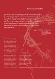 Neurowissenschaften - Hertie Stiftung