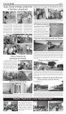 Edição 340 - Page 7