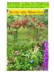 Sommer-Blüten-Träume