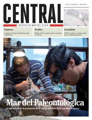 Revista CENTRAL 66