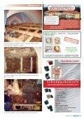 Rommersdorf Der Zauber der Wurzel - rheinkiesel - Seite 5