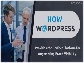 WordPress Provides the Perfect Platform for Augmenting Brand Visibility