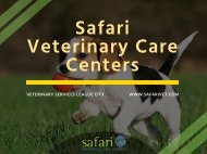 Do your pet in need of Veterinary Services in League City, TX? Visit Safari Vet
