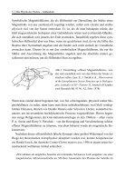 PdN-Magnetische-Rekonnexion - Page 5