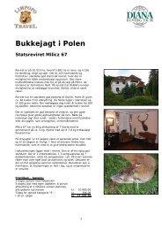 Bukkejagt i Polen Statsreviret Milicz 67 - Limpopo Travel