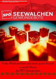 Ausgabe Weihnachten 2010 - SPÖ Seewalchen am Attersee