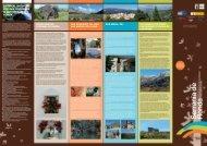entwicklungsplan für den tourismus in der serranía de ronda