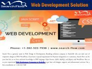 Web Development Solution