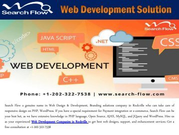 Web Development Solution