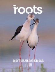 Inkijkexemplaar-Roots-Agenda