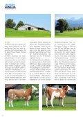Fleckvieh Welt 150 - Seite 6