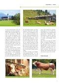 Fleckvieh Welt 150 - Seite 7