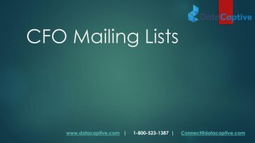 CFO Email List | CFO Mailing Address Database | CFO Contact List
